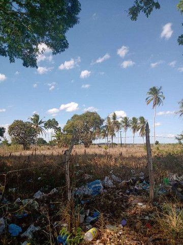 Vende um terreno com 5.5 hectares - Foto 3