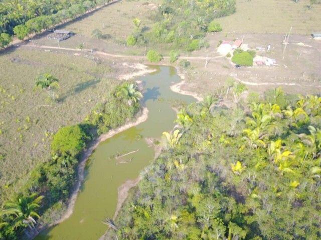 Fazenda com 123 hectares e 4 tanques de peixes - Foto 2