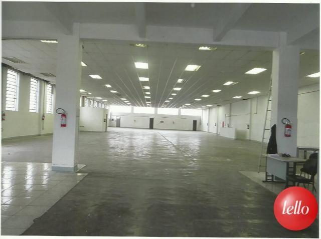 Galpão/depósito/armazém para alugar em Aricanduva, São paulo cod:191787 - Foto 7
