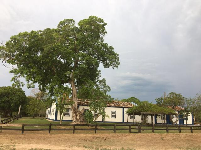 Fazenda 9.715 hectares no pantanal de Poconé MT - Foto 5