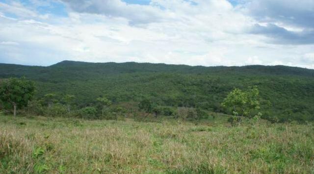 Fazenda 225 km de Goiânia município de Ipameri - Foto 7