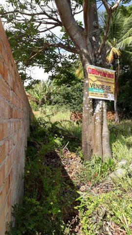 Vendo terreno na Vila de Cuiarana - Foto 5