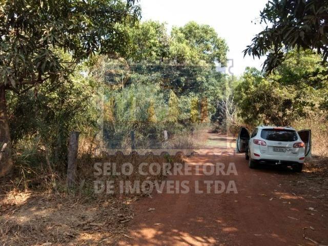 Otima Fazenda Muni. de Santo Antonio de Leveger a 20 km de Cuiabá - Foto 2