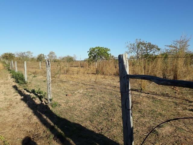 Chácara 04 hectares - Flores de Goiás - Foto 10