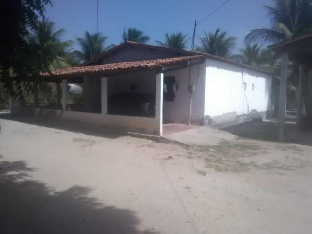 16 Ha irrigado Baixa Acaraú próximo do Marco - Foto 10