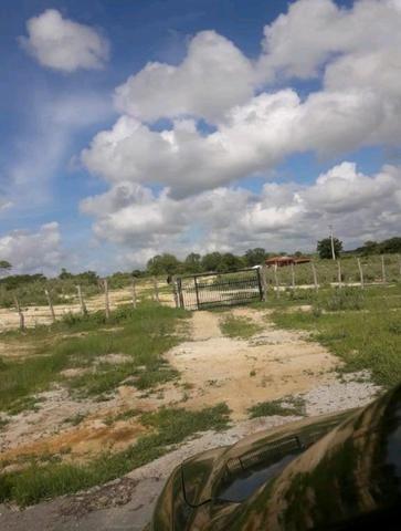 Fazenda rural em forquilha - Foto 16