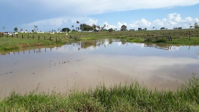 Fazenda no Acre - Foto 9
