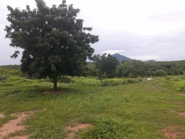 Fazenda rural em forquilha - Foto 2