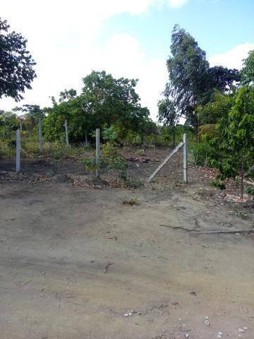 Vendo terreno 10x20 em caetes 2 abreu e lima - Foto 2