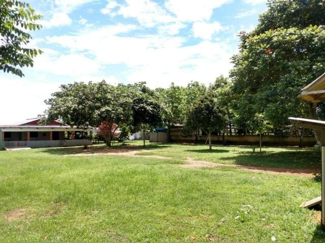 Área Rural (61 hectares) - Foto 2
