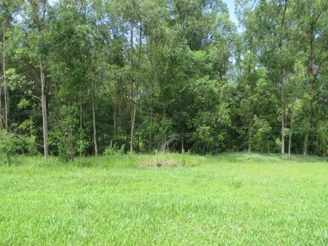 Terreno ninho verde, com fundo para área verde, 450 m², Imobiliária Paletó - Foto 5