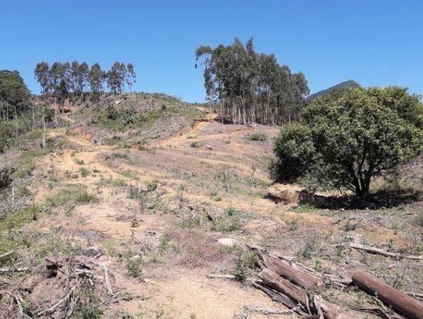 Sítio Localizado na Estrada Geral, Alto Braço Baú, 45 mil m² - Foto 8