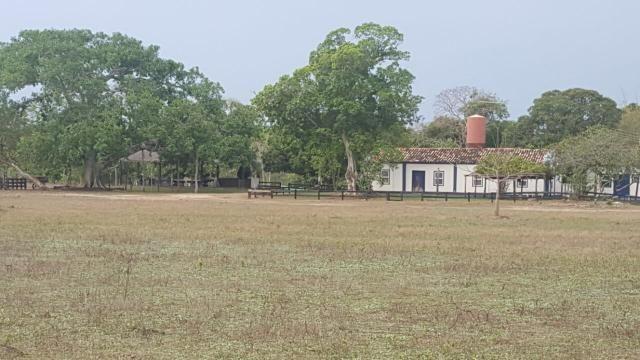 Fazenda 9.715 hectares no pantanal de Poconé MT - Foto 4