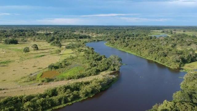 Fazenda 9.715 hectares no pantanal de Poconé MT - Foto 7