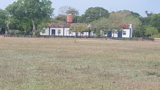 Fazenda 9.715 hectares no pantanal de Poconé MT - Foto 3