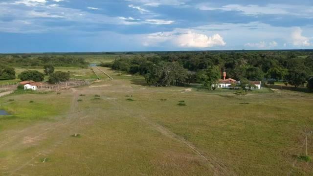 Fazenda 9.715 hectares no pantanal de Poconé MT - Foto 6