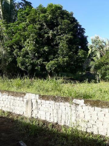 Sítio serra são vicente - Foto 9