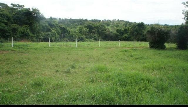 Fazenda 225 km de Goiânia município de Ipameri - Foto 4