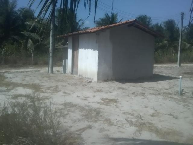 16 Ha irrigado Baixa Acaraú próximo do Marco - Foto 11