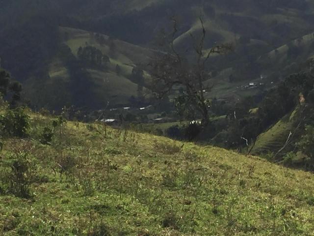 Excelente Fazenda 1km do centro de Delfim Moreira - Foto 3