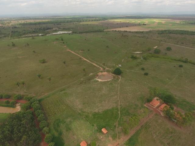 Fazenda 5.900 há (1.219 alq) pronta para produção Bovina norte do Tocantins - Foto 7