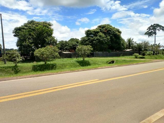 Área Rural (61 hectares) - Foto 4