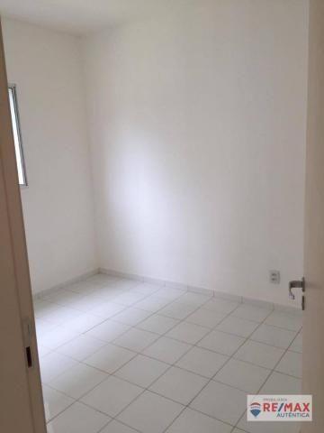 Apartamento 3 quartos Aluguel - Foto 6