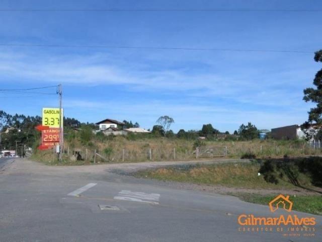 Terreno para Venda, 5.277,53 m², São Bento do Sul / SC, bairro Serra Alta - Foto 2