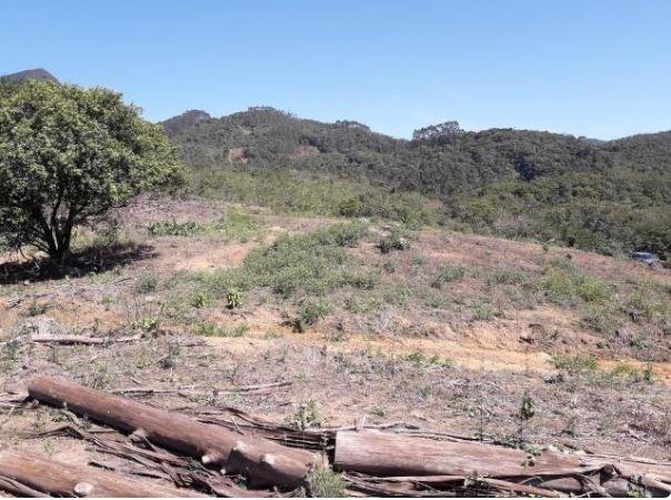 Sítio Localizado na Estrada Geral, Alto Braço Baú, 45 mil m² - Foto 11