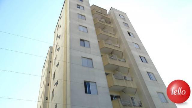 Apartamento à venda com 2 dormitórios em Tucuruvi, São paulo cod:181573