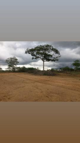 Chácara São Jorge - 1.000 m2 - R$ 170,00 parcelas - ÚLTIMAS UNIDADES ! - Foto 4