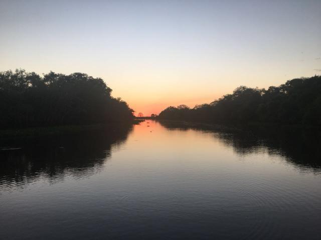 Fazenda 9.715 hectares no pantanal de Poconé MT - Foto 20
