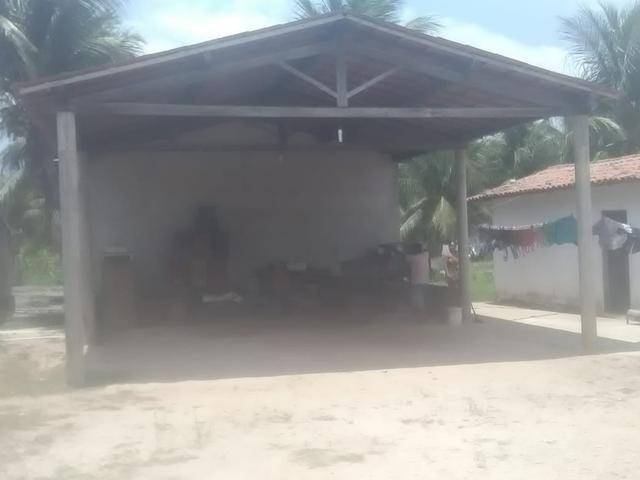 16 Ha irrigado Baixa Acaraú próximo do Marco - Foto 14
