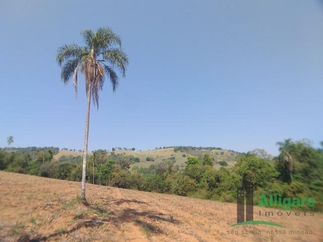 Fazenda Em Pouso Alegre - Foto 9