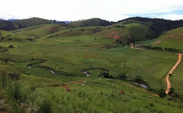 Linda Fazenda no Vale do Paraiba, porteira fechada - Cód 1505 - Foto 2