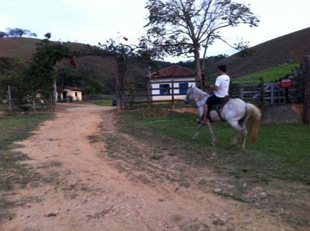 Linda Fazenda no Vale do Paraiba, porteira fechada - Cód 1505 - Foto 15