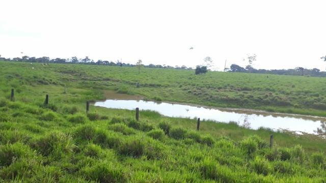Fazenda no Acre - Foto 2