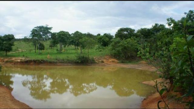 Fazenda 225 km de Goiânia município de Ipameri - Foto 8