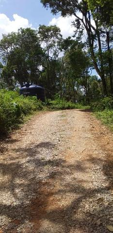 Oportunidade Linda Chacrinha alta semi plana campina grande do sul - Foto 8