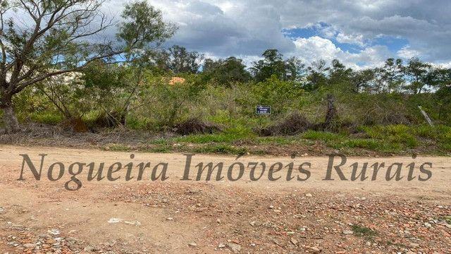Terreno de 1.138 m², loteamento do Bosque (Nogueira Imóveis) - Foto 16