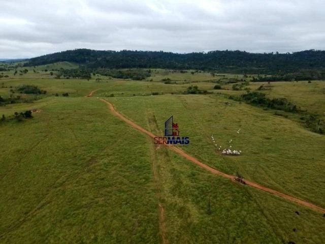 Belissima Fazenda Rural Espigão do oeste/RO - Foto 4