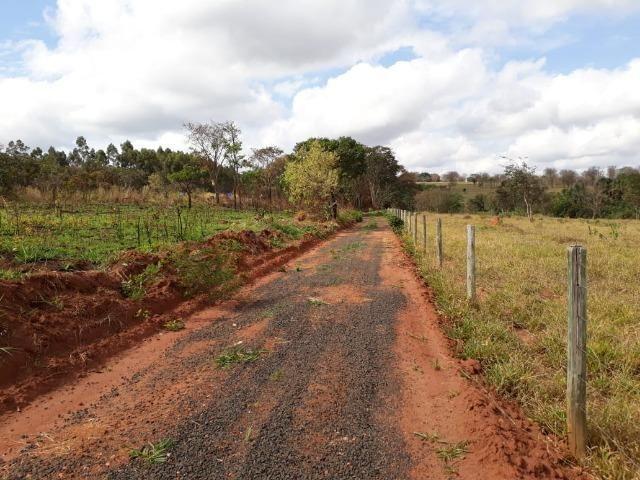 Vendo sitio 2 hectares (20.000 m2) - Foto 13