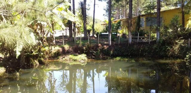 Sitio/ Chácara para Alugar/Palmeiras Suzano - Foto 4