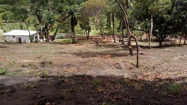 Sítio em paulista 50de frente com 70de fundos largura e 100metros de comprimento - Foto 16