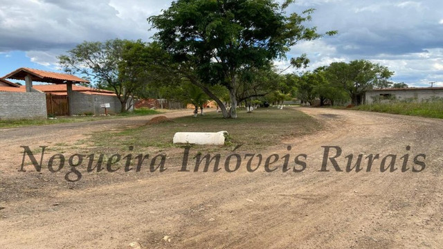 Terreno de 1.138 m², loteamento do Bosque (Nogueira Imóveis) - Foto 12