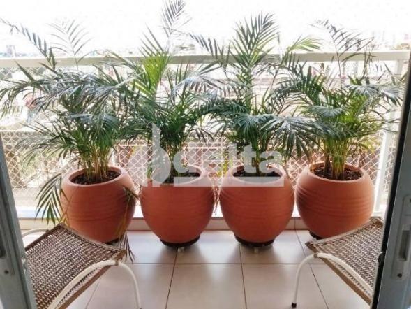 Apartamento para alugar com 3 dormitórios em Morada da colina, Uberlandia cod:643041 - Foto 4