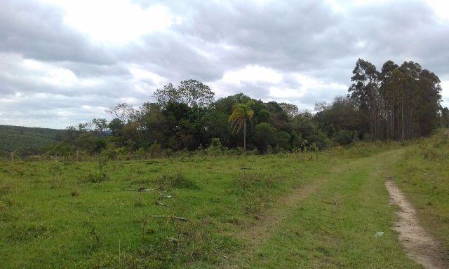 Sorocaba Região 30 Alqueires - Foto 7