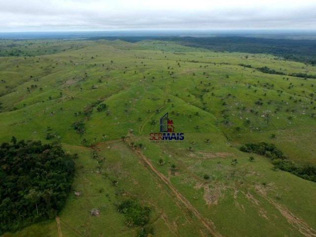 Belissima Fazenda Rural Espigão do oeste/RO - Foto 12