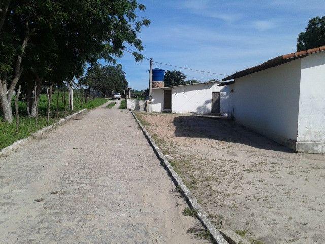 Em ceara mirim fazenda com 36 há,casa,curral,poço,pasto,pocilga,barreiro - Foto 20
