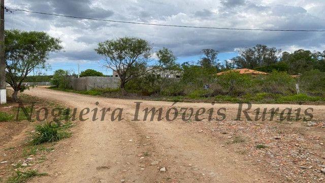 Terreno de 1.138 m², loteamento do Bosque (Nogueira Imóveis) - Foto 13